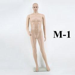 La couleur de peau Mannequin de mâle en plastique
