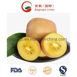 Новых сельскохозяйственных культур для экспорта свежих киви