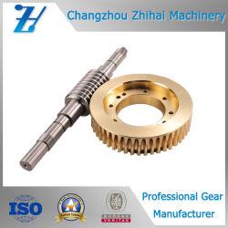 Engranaje helicoidal de latón se utiliza para impresoras industriales