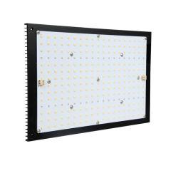 完全なスペクトルの防水園芸エンジンの線形農場1000W LEDはライトバーライトを育てる