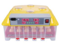 Voller automatischer Geflügel-Inkubator-/Huhn-Ei-Ausbrütung-Verkauf/Ei, das Maschine ausbrütet