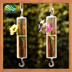 Creativa europea clara colgando florero tubo largo