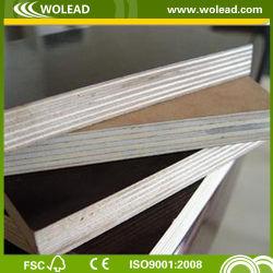 Alta qualità 11+2 strati del legno duro WBP (w15487) del pioppo
