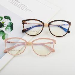 2020 Nieuw ontwerp TR90 metalen optische fotolijst Women Style Blue Blokker Stock Fashion