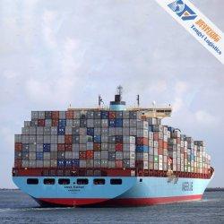 심천에서 최고 근수 서비스를 가진 미국/UK/호주 또는 뉴질랜드에 빠른 바다 콘테이너 출하 서비스