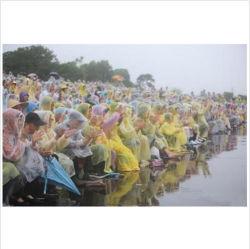 Éénmalige Regenjas van de Laag van de Regen van de Reis van de Slijtage van de Regen van de Laag van de Regen van de Reis van de Regenkleding van de Poncho van de Regenjassen van pvc van de manier de Beschikbare