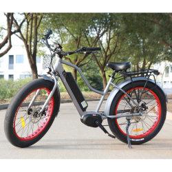 O novo modelo da cidade e na bicicleta com unidade intermediária