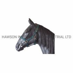 Standard Halter für Pferdesattel