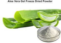 Weiß zu elfenbeinfarbenes Aloevera-Gel gefriertrocknetem Puder