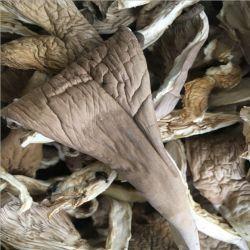 Сушеные грибы перламутровый