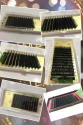 Qualitäts-Wimper-Extensions-Eigenmarken-Nerz-Seide in der Peitsche-Extension handgemacht