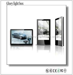 Backlit 실내 벽 설치 LED 전시 광고