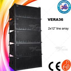 """Vera36 do sistema de som do altifalante de coluna linear de dupla 12"""""""