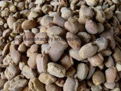 Muertos de la magnesita quemado con un gran valor industrial (dBm90)