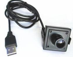 Mini USB 1,3 Câmara CCTV com objectiva de placa HD, popular usado para máquina de multibanco& Equipamentos Industriais, instrumentos médicos...