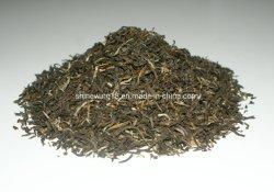 Parfum de fleurs de jasmin Mao Jian Slim le thé vert