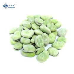 Sinocharm vegetal congelado IQF congelado de alta calidad haba verde o blanco