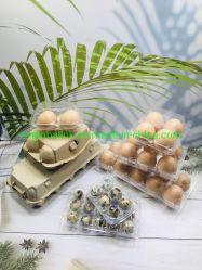 Boîtes d'emballage pour oeufs Plastic Chicken boîte pour oeufs Quail emballage pour oeufs Plateau plateau plateau plateau à œufs paquet plastique 12/15/30 cellules