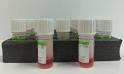 Kit de prueba de NCP de Dispositivos Médicos Kit de prueba de diagnóstico rápido Cornonvirus Kit de detección de antígeno de la novela