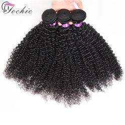 Kinky Curly sin procesar afro brasileña mayorista cabello virgen tejer con doble trama 100 Remy tejer cabello humano.