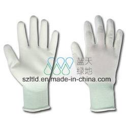 Palm pu mettre en place les gants (LTLD512)