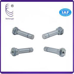 Commission spéciale de la vis de fixation en forme de pièces en zinc plaqué
