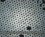 De Magneet van de rotor voor het Stappen van het Horloge van het Kwarts Motor