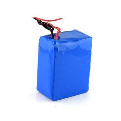 カスタマイズされた 24V リチウムイオンバッテリパック(電動バイク用)