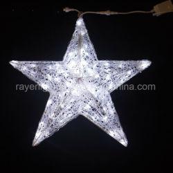 Feux à LED de plein air Star Accueil Décoration de Noël