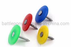 Capuchon en plastique des ongles avec anneau de bouchon en plastique de la queue de fixation/Grip-Cap clou