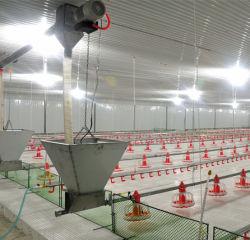 Moderne et de l'équipement automatique avancée de la volaille pour poulets de chair de poulet/éleveur/couche