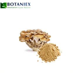 Polvere organica dell'estratto di Sinensis dello Shiitake dei leoni della criniera di Chaga del fungo di Cordyceps Maitake Reishi