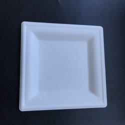 Vierkante Plaat van de Container van het Voedsel van de Vezel van het Suikerriet van het Document van de douane de Milieuvriendelijke Biologisch afbreekbare