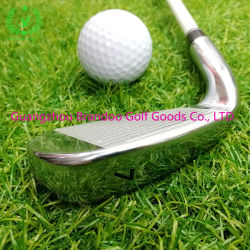 Woman Stainless Head第7 Ironのための7#鉄Golf Clubs