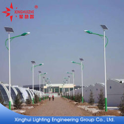 비용 효과적인 고품질 IP65는 Hot-DIP 직류 전기를 통하고 분말에 의하여 입힌 전등 기둥을%s 가진 옥외 LED 태양 가로등을 방수 처리한다