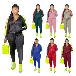 مصنع [ديريكت بريس] [بلس] حجم نساء [هوودي] [جغر] مجموعة نساء