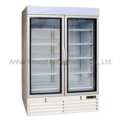 En position verticale Porte en verre au congélateur, Double porte en verre congélateur commercial