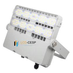 ちょうど1年および自由な維持の回収期間屋外か屋内防水IP65 IP66のフラッドライトLED軽い100W LEDの高いマストライト