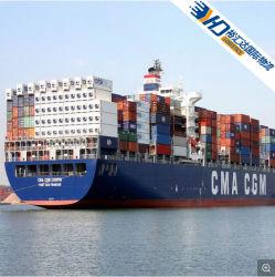 海上輸送貨物運送業者の中国 FCL/LCL から Fiji/New Zealand/Cook Islands/U. S.A