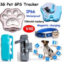 Prix de gros étanche Pet 3G Mini GPS tracker pour chat chien oiseaux V40