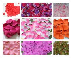 La soie de pétales de rose pour la décoration