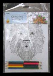 28921 28922 La coloración DIY Kit de pintura sobre lienzo pintado a mano aceite para la decoración del hogar