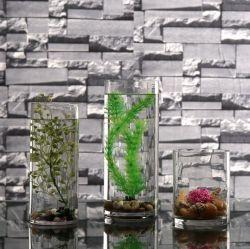 높은 붕규산 직선 튜브 Vase Simple Transparent Glass Vase for 홈 장식