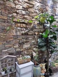 Chapa de la cultura de pizarra Claddingyellow muro de piedra de piedra de la cultura de la pila