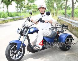 Commerce de gros pneus 4000W de matières grasses 3 roues CEE de la Chine Trike électrique scooter moto du hacheur de paille