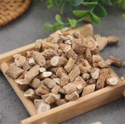 حظر مصنع إمداد المصنع من LAN عالي الجودة بيع ساخن نقي طب الأعشاب الطبيعية يشع آيساتيديس للشاي الصحي