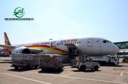 الشحن الجوي خدمة الشحن الجوي (UPS) فيديكس إكسبريس خدمة التوصيل السريع الصين إلى نيوزيلندا/فيتنام/كاليدونيا الجديدة/بروناي/فانواتو/تونغا