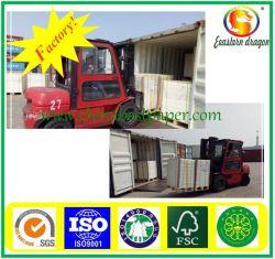 Dragon Oriental C2S Matt 170g Art Paper (170g*250feuilles/pack)
