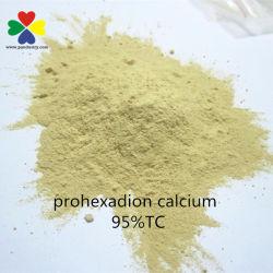 농약 New Pgr Prohexadione Calcium 95tc Supplier