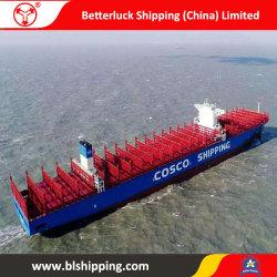 Overzeese van de container Vracht van China aan het Verschepen van Christchurch Nieuw Zeeland